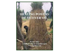 HEALING POWERS OF VETIVER OIL (The Aromatherapy Professional